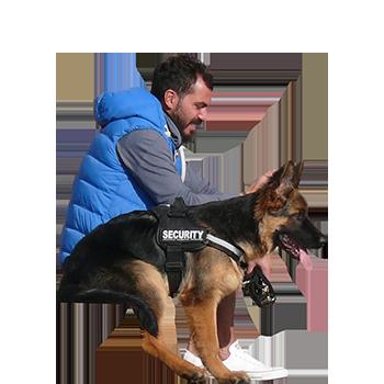 Imagenatives 0027 sitting man with dog cutout